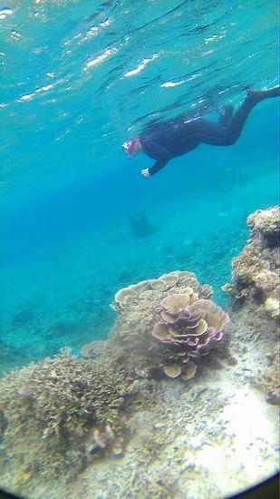 水中世界をゆったり楽しむS上さんです