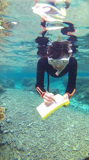 水中ノートに質問です。