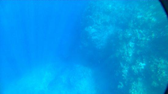 ズドーンと深い水深20mオーバーの世界です
