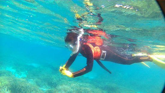 早速水中カメラで撮影です