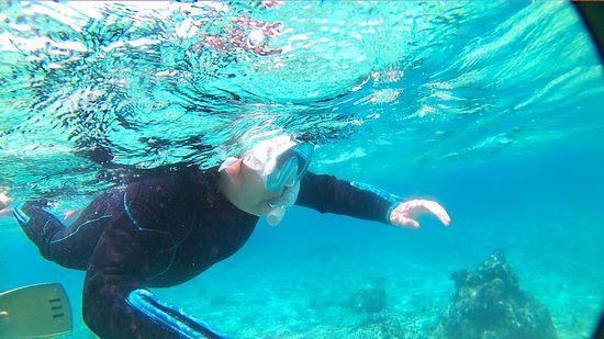 お母さん、だんだん海になじんでいきます