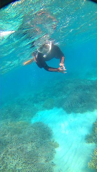 リノちゃん、一人で泳いでいます。
