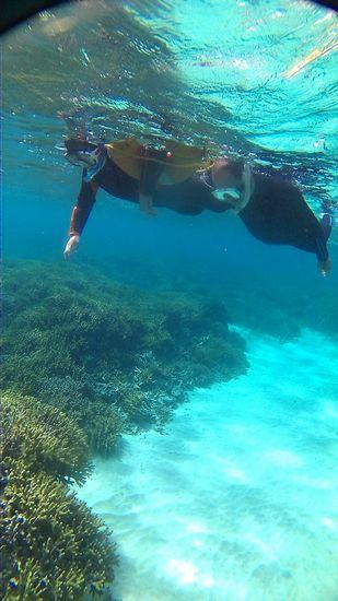 サンゴと楽しんでいましたね!