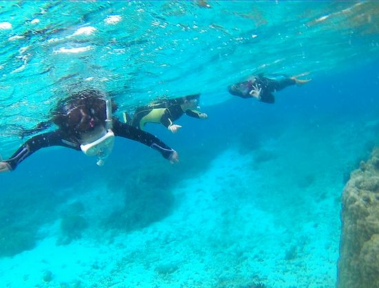 水中世界を楽しみましたね