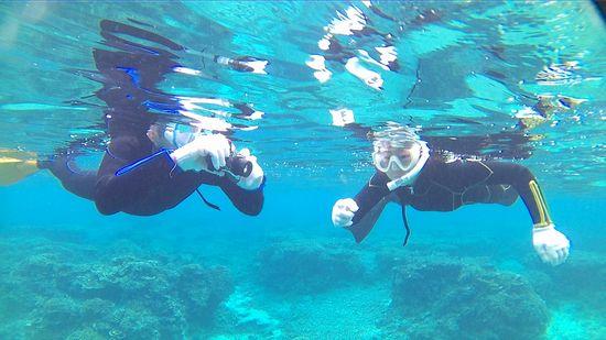 水中を浮遊するプランクトンを見ています。
