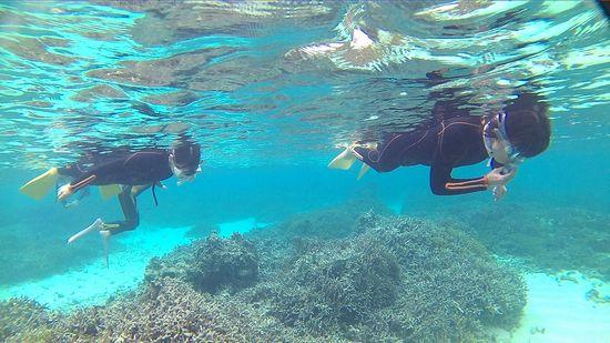 お母さん、カホお姉ちゃんも余裕の泳ぎです。