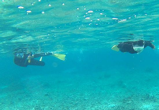 水中ビデオで撮影を楽しむお父さん