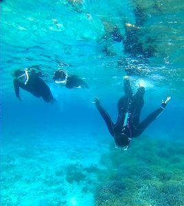 空が青ければ、水中世界はもっと青!満喫ツアーでしたっ!