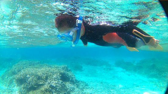 ナルキ君、慣れた泳ぎです