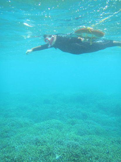 慣れれば楽勝の泳ぎです。
