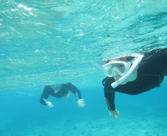 お父さん、お母さん、慣れれば、楽勝の泳ぎです
