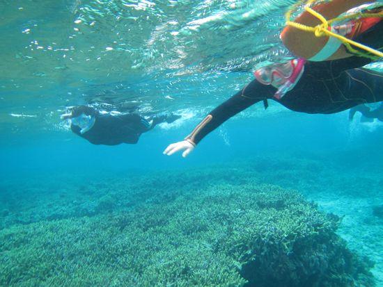 サンゴとお魚さんを楽しんでいるN崎さんとK藤さん