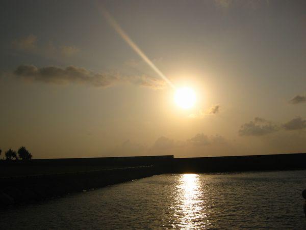 朝日が燦燦と降り注いでいます