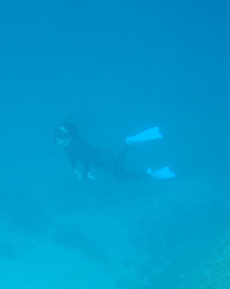 水深8mラインで素潜り