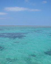 青い空、エメラルドグリーンの海 シュノーケリング日和でした