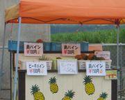 石垣島のグルメ パイナップル
