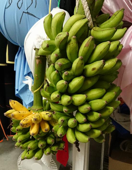 今、バナナであふれかえっています