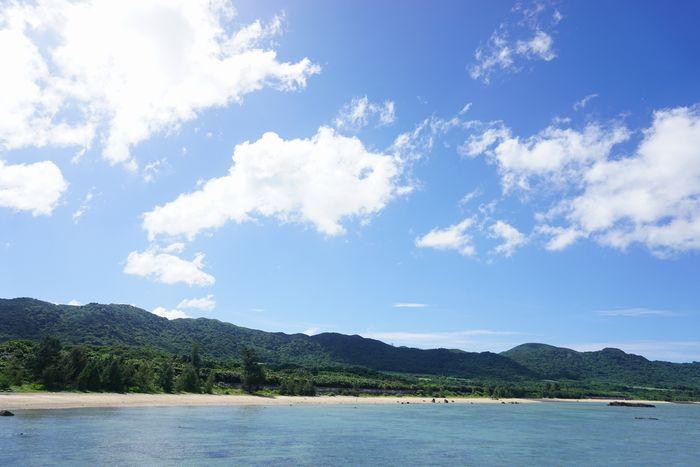 石垣島は今日も灼熱の陽射しです