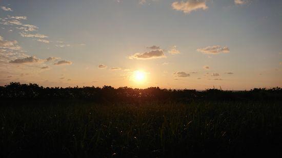 朝から快晴の石垣島です。