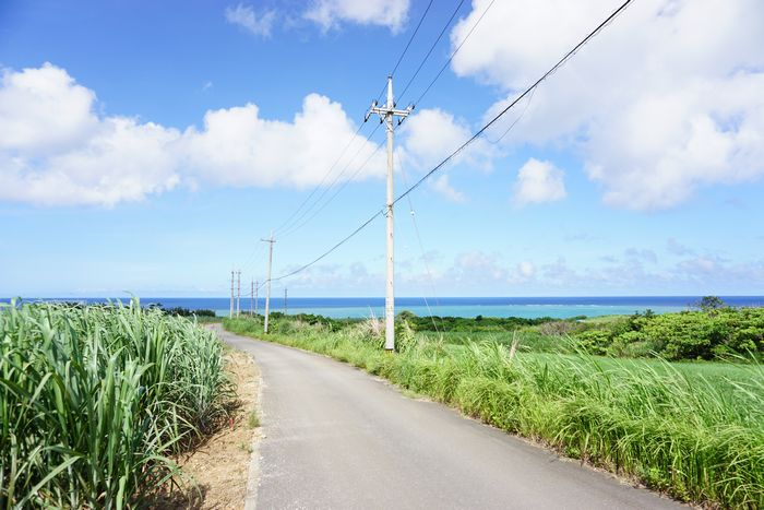 道路、電信柱の向こうに石垣島の海です