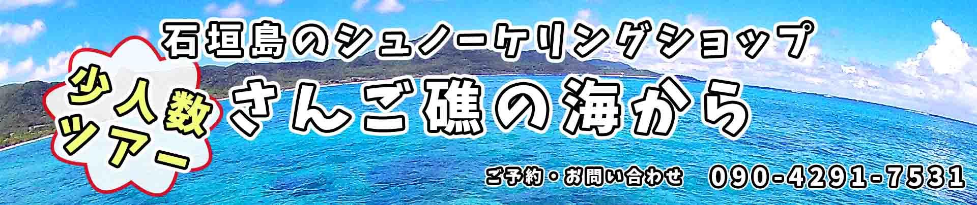 石垣島でシュノーケリング、少人数ツアーのさんご礁の海から