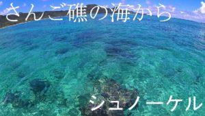 真夏日が続く石垣島、海のコンディションもシュノーケリング日和です