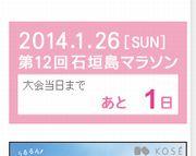 明日は石垣島マラソンです