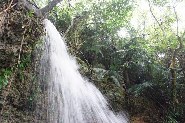 ものすごい勢いある滝です