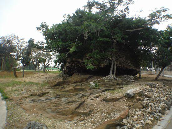 崎原公園の津波岩