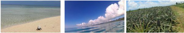 石垣島の風景1