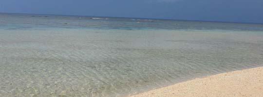 透明度の高いきれいなビーチ