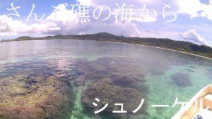 石垣島を一日コースでシュノーケリング&洞窟ツアー!