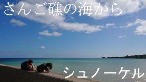 石垣島のシュノーケルツアー!10月、11月、12月はどんなコンディション?