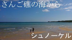 うっすら雲が涼しい石垣島。快適シュノーケルです♪